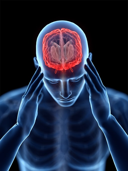 Head injury and Brain Injury
